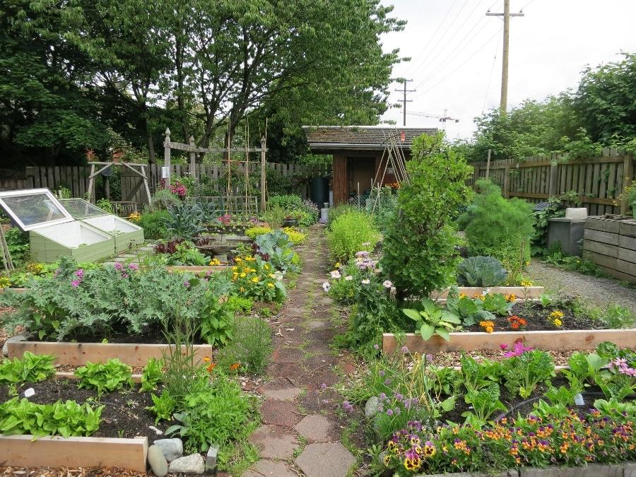 5 Tips For Starting A Sustainable Vegetable Garden - veg garden design colorado